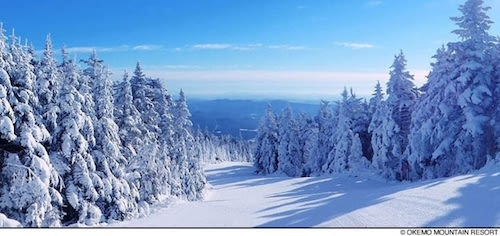Eleven Reasons to Visit Okemo.