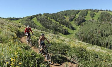 Seven reasons why summer is good for skiers.