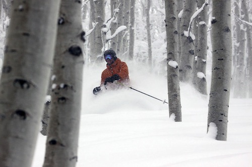Want to save the snow? Plant some trees.